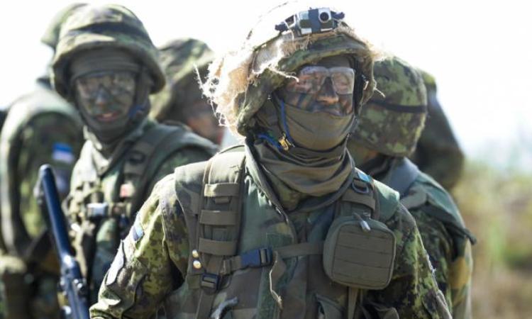 Награни алкоголизма оказалась половина военных элитной эстонской части