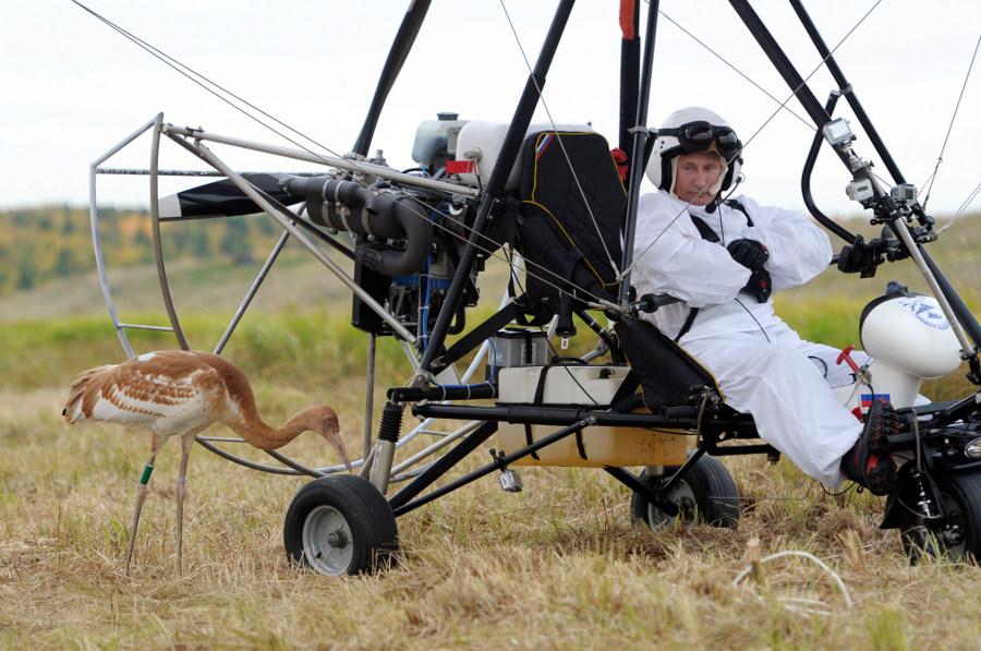 Для Путина сделают вертолетную площадку